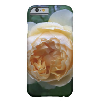 Coque iphone rose de chou d'abricot
