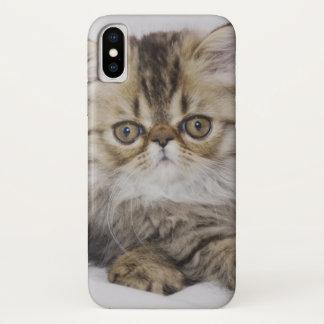 Coque iPhone X Chat persan, catus de Felis, chat tigré de Brown,