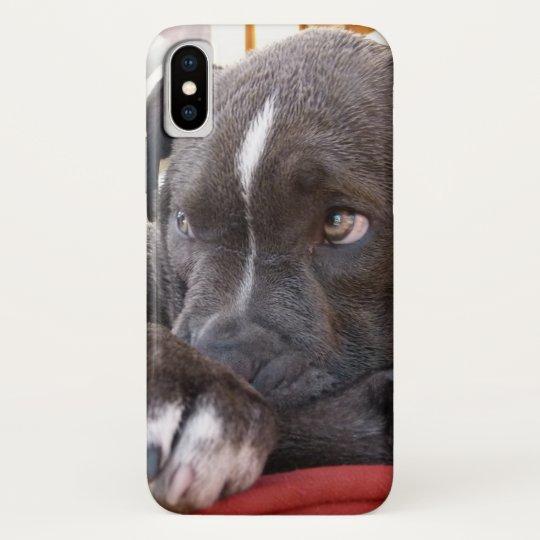 coque iphone x pitbull