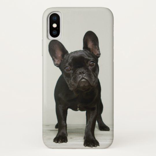 coque bouledogue iphone x