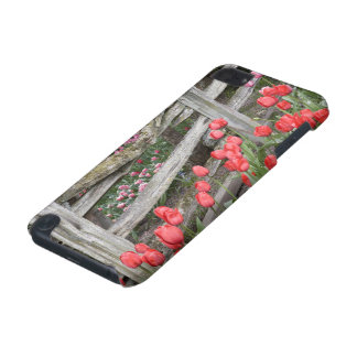 COQUE iPod TOUCH 5G