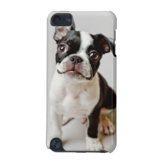 Coque iPod Touch 5G Boston Terrier
