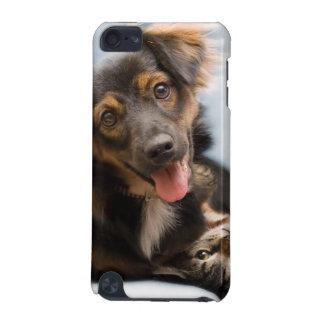 Coque iPod Touch 5G Chats et chiens - chien drôle - chats drôles