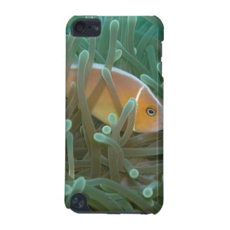 Coque iPod Touch 5G IPod Touch 5G BarelyThere Luminescent Coral & Fish
