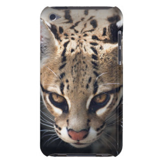 Coque iPod Touch Caisse féroce d'iPod