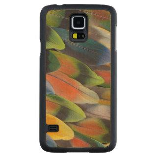 Coque Mince En Érable Galaxy S5 Conception colorée de plume de perruche
