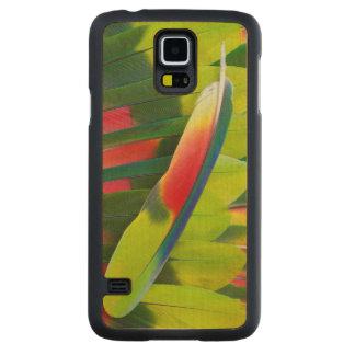 Coque Mince En Érable Galaxy S5 D'Amazone de perroquet de plume toujours la vie