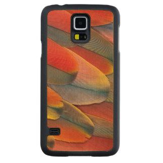 Coque Mince En Érable Galaxy S5 Plan rapproché de plume d'ara d'écarlate