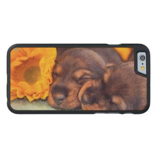 Coque Mince En Érable iPhone 6 Chiots adorables de sommeil Doxen