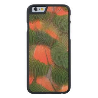 Coque Mince En Érable iPhone 6 Motif rouge et vert de plume