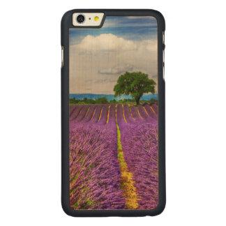 Coque Mince En Érable iPhone 6 Plus Gisement de lavande pittoresque, France