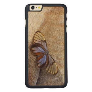 Coque Mince En Érable iPhone 6 Plus plume égyptienne d'oie de papillon de Verre-aile