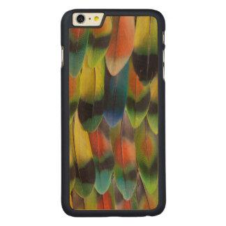 Coque Mince En Érable iPhone 6 Plus Plumes de queue colorées de perruche