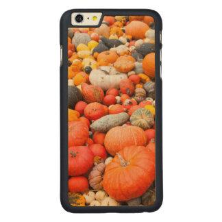 Coque Mince En Érable iPhone 6 Plus Variété de courge à vendre, Allemagne