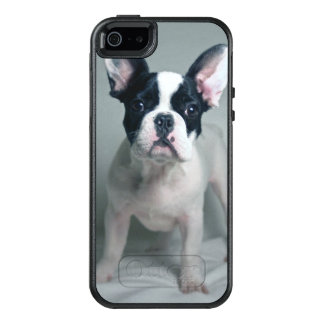 Coque OtterBox iPhone 5, 5s Et SE Chiot de bouledogue français à l'attention