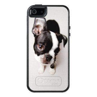 Coque OtterBox iPhone 5, 5s Et SE Chiot d'Edison Boston Terrier