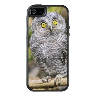 Coque OtterBox iPhone 5, 5s Et SE Screetch-Hibou de bébé