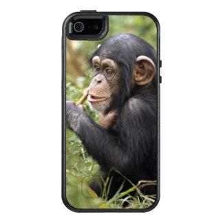 Coque OtterBox iPhone 5, 5s Et SE Troglodytes de casserole du chimpanzé | de bébé