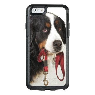 Coque OtterBox iPhone 6/6s Chien de montagne de Bernese (Berner Sennenhund)