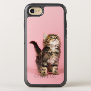 coque iphone 7 chaton