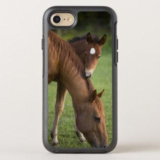 Coque OtterBox Symmetry iPhone 8/7 Jument et colt quarts américains de cheval dans le