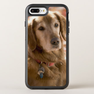 Coque OtterBox Symmetry iPhone 8 Plus/7 Plus Fermez-vous du chien d'or de labrador retriever