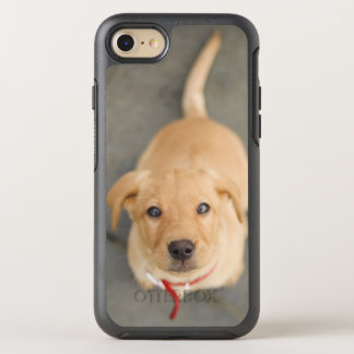 Coque Otterbox Symmetry Pour iPhone 7 Chiot rouge 2 de Fox Labrador