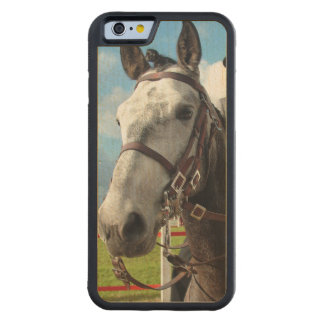 Coque Pare-chocs En Érable iPhone 6 Cheval pur de race