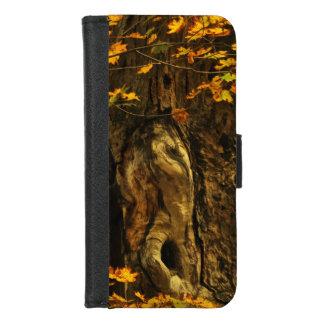 Coque Portefeuille Pour iPhone 8/7 iPhone antique d'arbre d'automne 8/7 caisse de