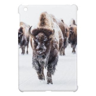 Coque Pour iPad Mini La neige a couvert le bison, le parc national en