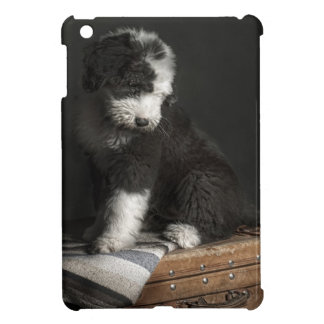 Coque Pour iPad Mini Portrait de chiot de queue écourtée dans le studio