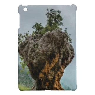 Coque Pour iPad Mini roche équilibrée érodée