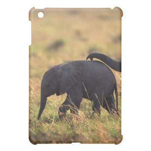 Coque Pour iPad Mini Tronc de progéniture émouvante d'éléphant, Kenya,