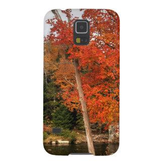 Coque Pour Samsung Galaxy S5 Automne d'Adirondack