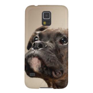 Coque Pour Samsung Galaxy S5 Un chiot Brindle de boxeur recherchant