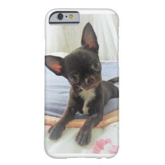 coque téléphone blanc chihuahua marron portrait