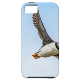 Coque Tough iPhone 5 Plume de mouche de faune de vol de mer d'oiseau de