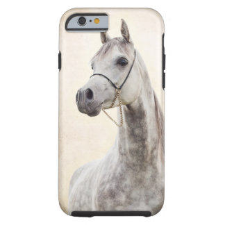 Coque Tough iPhone 6 collection de cheval. Arabe