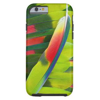 Coque Tough iPhone 6 D'Amazone de perroquet de plume toujours la vie