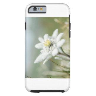 Coque Tough iPhone 6 Fleur d'Edelweis