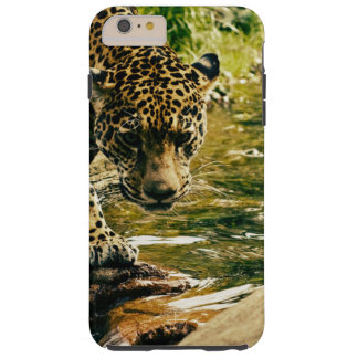 Coque Tough iPhone 6 Plus Photographie sauvage de chat de beau léopard