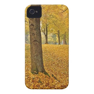 COQUES Case-Mate iPhone 4