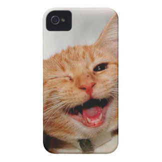 Coques Case-Mate iPhone 4 Chat clignant de l'oeil - chat orange - les chats