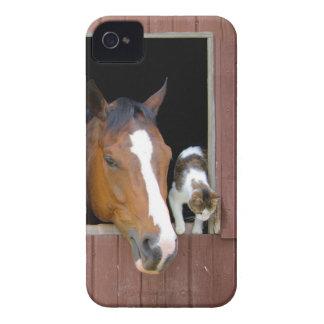 Coques Case-Mate iPhone 4 Chat et cheval - ranch de cheval - amants de