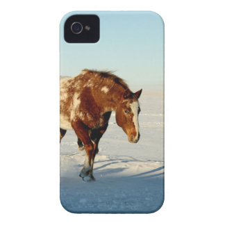 Coques Case-Mate iPhone 4 Cheval en hiver