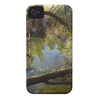 Coques Case-Mate iPhone 4 Lac 4 park de canyon de Franklin
