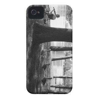 Coques Case-Mate iPhone 4 Musique et nature