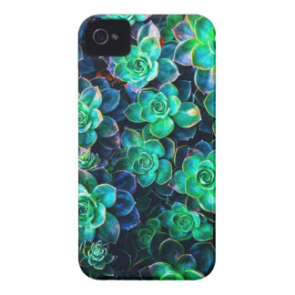 Coques Case-Mate iPhone 4 Photo succulente verte de nature