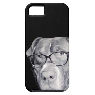 Coques Case-Mate iPhone 5 Addict Creation - Design Falco (Pitbull rednose)