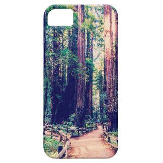 Coques Case-Mate iPhone 5 Séquoias de Californie